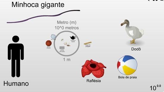 infográfico escala