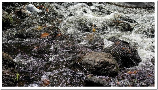 WaterIMG3473