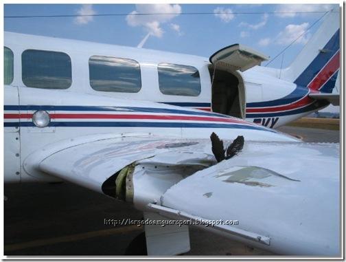 avião acidente (3)