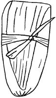 Tamal de hoja de maíz -Pina -10-2011