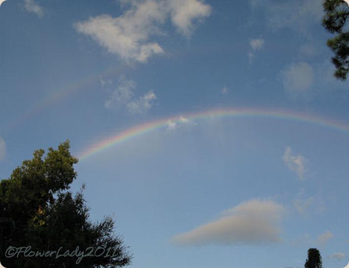 09-28-rainbow5