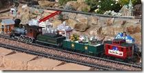 park train 2 (10)
