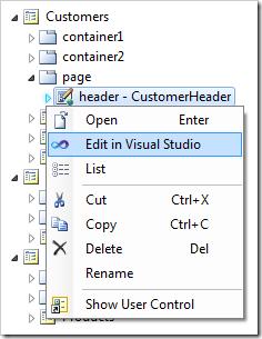 Editing the control in Visual Studio.