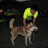 Pet Express Doggie Run 2012 Philippines. Jpg (4).JPG