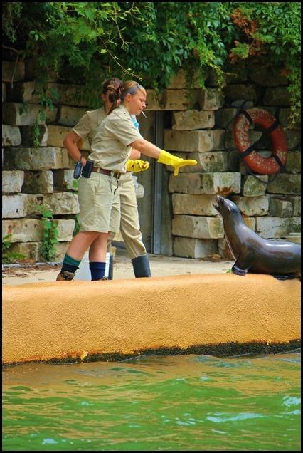 Zoo4 411