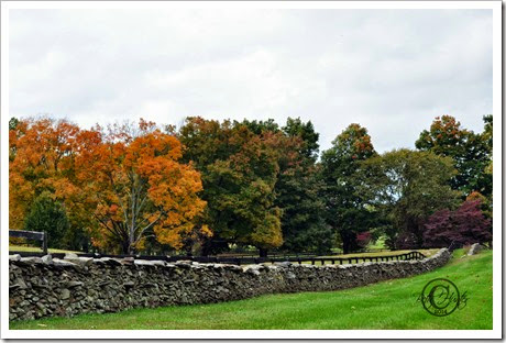 cr-fall-stone-fence