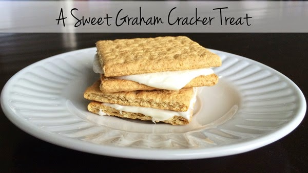 Graham Cracker Treat