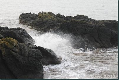 4-waves