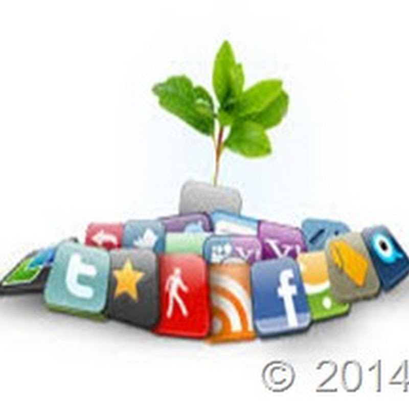 محاور نجاح التسويق الكتروني للمنتجات