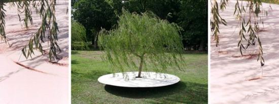 A arte das árvores (4)