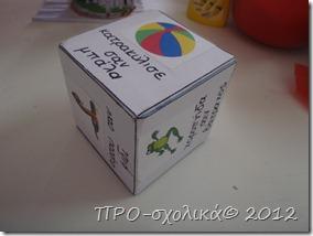 P5290540
