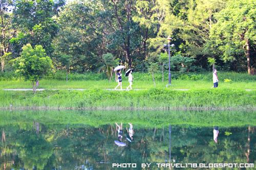 台東黑森林公園琵琶湖
