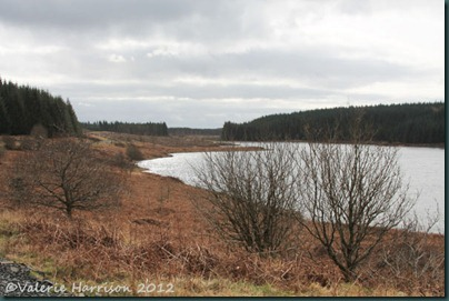 4-Loch-Maberry