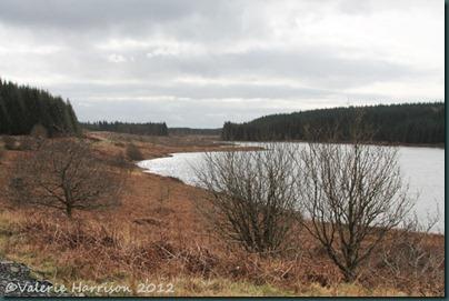 4-Loch-Maberry