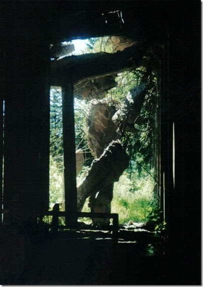 Collapsed West End of Concrete Snowshed on the Iron Goat Trail in 2000