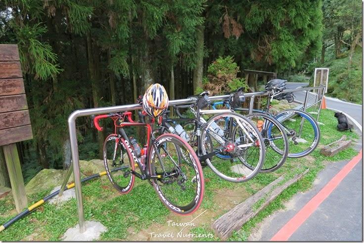 三峽熊空茶園 (27)