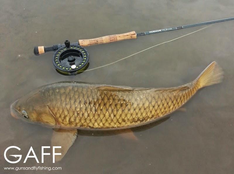 Fly Fishing for Carp (4).jpg