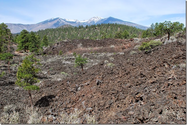 05-06-14 C Sunset Crater NM (57)
