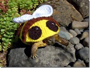 cosasdivertidas tortugas con ganchillo (15)