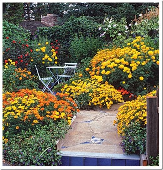 1725120-flowers-slide1-xl
