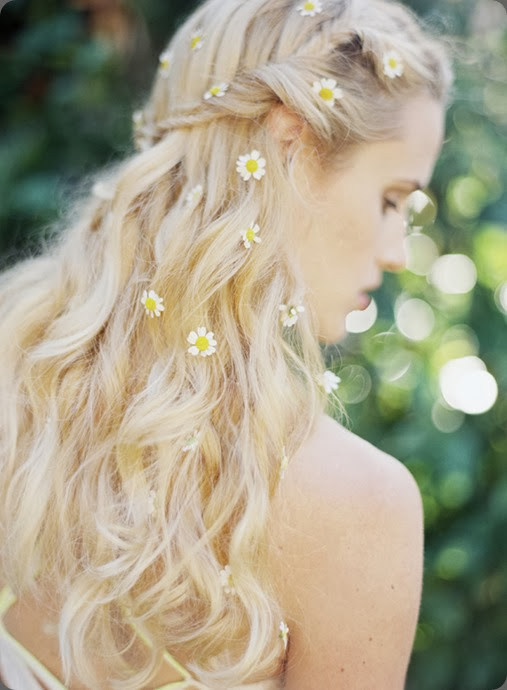chamomile wearing-daisies-in-your-hair  Jess Wilcox photo and kelly oshiro design
