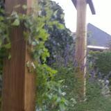2010-09-09_20-02-00_879_Raalte.jpg