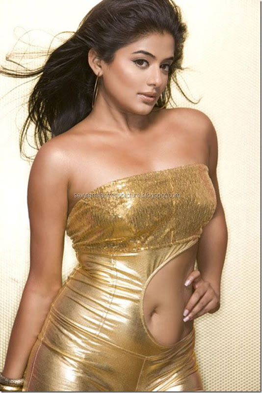 actress_priyamani_sexy_exposing_hot_stills