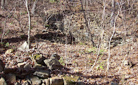 Holden's Mill Ruins Photo