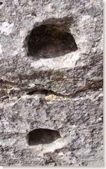 Entalles del Camino Hondo - Castellar de Meca