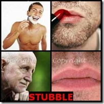 STUBBLE- 4 Pics 1 Word Answers 3 Letters