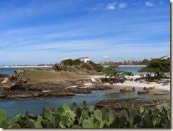 Praia do Forte07