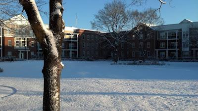 アパート中庭の雪