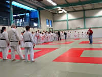 judo-adapte-coupe67-734.JPG