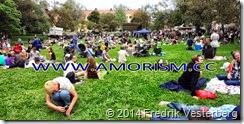 DSC02139.JPG Svandammsparken MIdsommarkransen festival med amorism