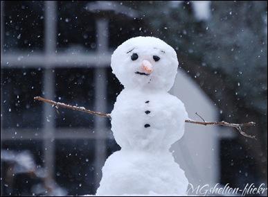 snowman-MGShelton-flickr