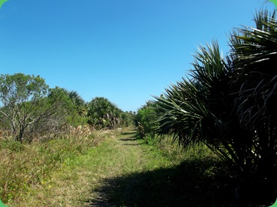 Barrier Island Center 065