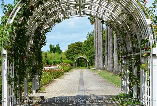 21 - Glória Ishizaka - Jardim Botânico Nagai - Osaka