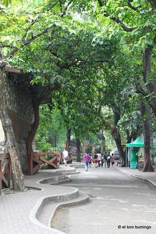 manila zoo 22