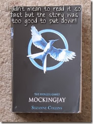 book 3 copy