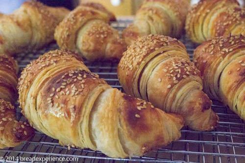 Sourdough Pretzel Croissants