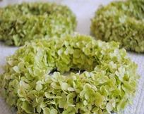 Hortensienkränze