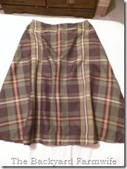plaid skirt 01