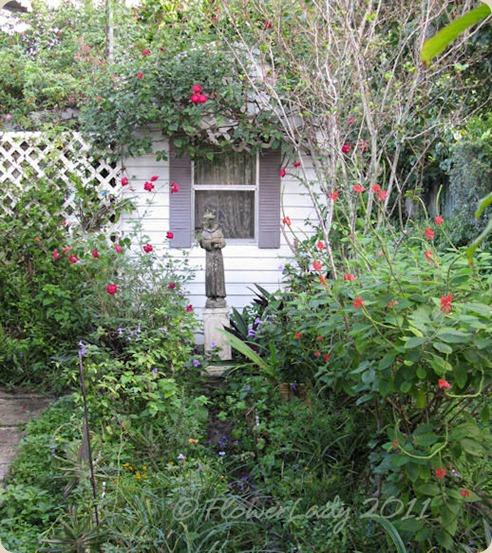 11-28-shed-gard
