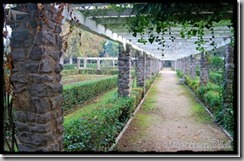 Parque_Labordeta (28)_thumb[1]