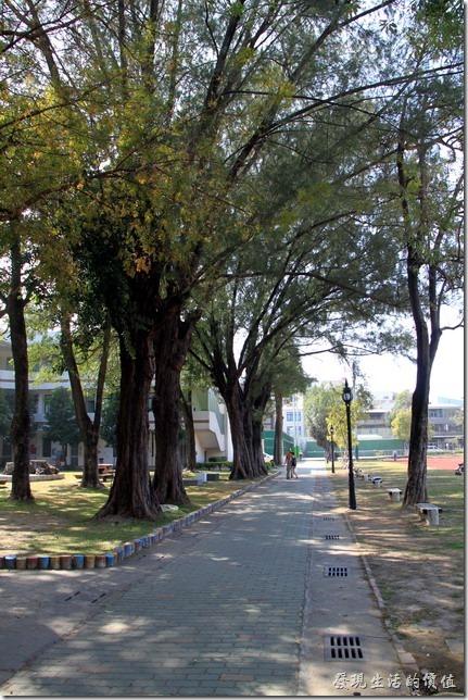 台南大學17