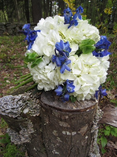 Blue, white and green bridal bouquet Ideas in Bloom