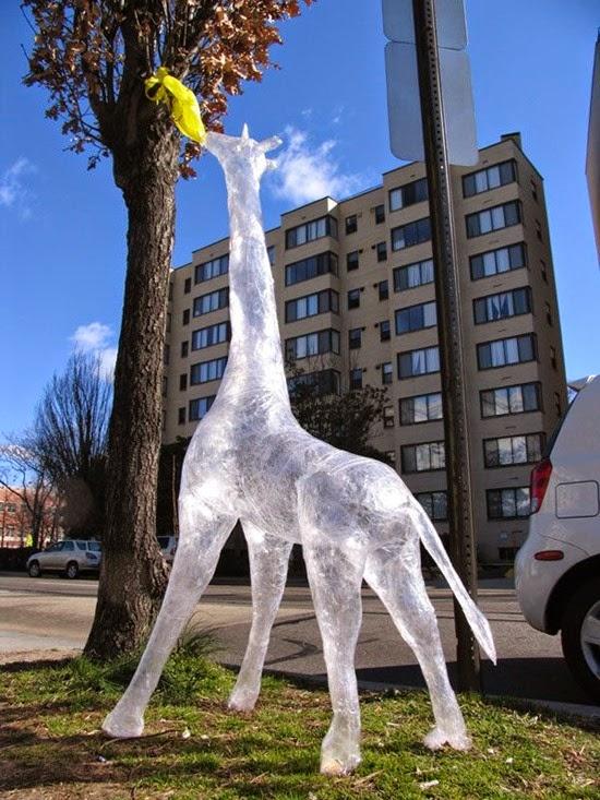 Selotape Giraffe