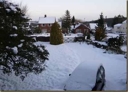 snow again2