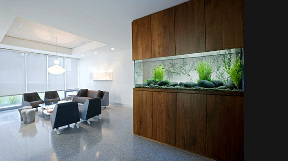 Wall-aquarium-with-modern-style