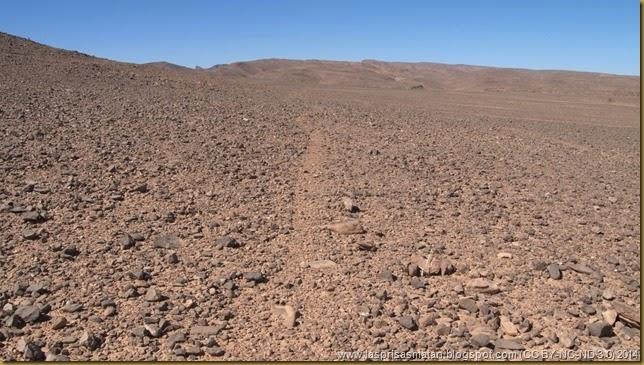 Desierto-204